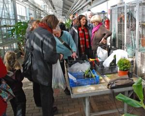 Pflanzen-Tausch-Markt