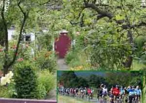 Geführte Fahrradtour des VfÖ zu Kleingärten im Stadtgebiet