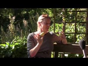 Veranstalterin Andrea Hein beantwortet unsere Interviewfragen zum Apfelfest!
